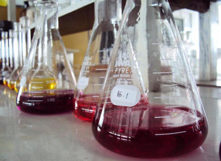 Químic